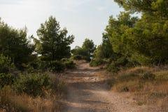 Leeg macadam en de stoffig wildernis van de wegtrog en bos van Kroatisch eiland Brac De aard van de wegtrog met groen bos en blau stock foto