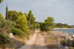 Leeg macadam en de stoffig wildernis van de wegtrog en bos van Kroatisch eiland Brac De aard van de wegtrog met groen bos en blau royalty-vrije stock foto's