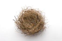 Leeg nest stock foto