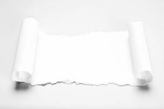 Leeg papierafval in rolvorm Stock Afbeeldingen
