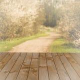 Leeg perspectief bruin hout over vage bomen met bokehachtergrond, voor de montering van de productvertoning Stock Fotografie