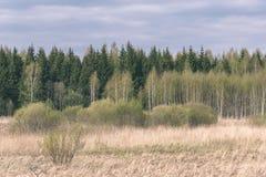 leeg plattelandslandschap in de herfst met gebieden en weiden en zeldzame bomen op achtergrond - uitstekende retro ziet eruit stock foto's