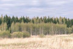 leeg plattelandslandschap in de herfst met gebieden en weiden en zeldzame bomen op achtergrond - uitstekende retro ziet eruit royalty-vrije stock fotografie