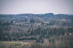 leeg plattelandslandschap in de herfst met gebieden en weiden en zeldzame bomen op achtergrond - uitstekende retro ziet eruit stock afbeeldingen