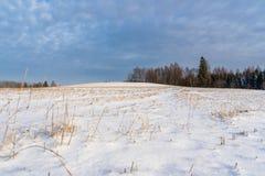 Leeg Plattelandslandschap in Sunny Winter Day met Sneeuw die de Grond, Abstracte Achtergrond met Diepe Blik behandelen stock afbeeldingen
