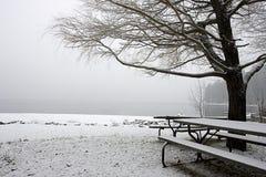 Leeg sneeuw behandeld park in de winter. Royalty-vrije Stock Foto's
