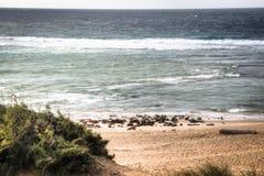 Leeg strand in de stad Tofo Stock Afbeeldingen