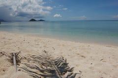 Leeg strand met duidelijke blauwe hemel Royalty-vrije Stock Foto's