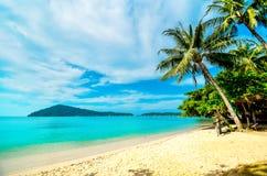 Leeg strand met een palm op een tropisch eiland Vakantie bij het overzees stock foto's