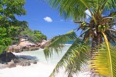 Leeg strand op Grote Soer, Seychellen Stock Fotografie