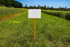 Leeg teken in een opheldering met vers gras stock foto
