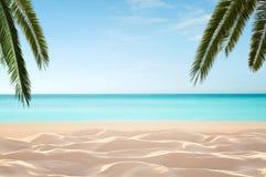 Leeg, tropisch strand stock afbeeldingen
