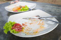 Leeg voedsel op schotel Stock Fotografie