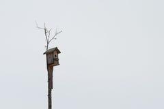 Leeg vogelhuis voor vogels Stock Afbeelding