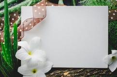 Leeg wit kader met bloemen op natuurlijke groene bladeren backgroun Stock Foto's