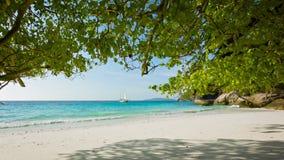 Leeg zandig strand Mooi tropisch landschap stock videobeelden