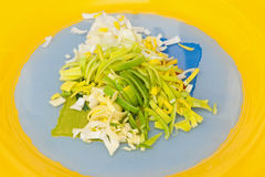 Leek. Pieces on the plate Royalty Free Stock Photos