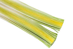 Leek. The beautiful texture of beautiful vegetables - raw leeks Stock Image