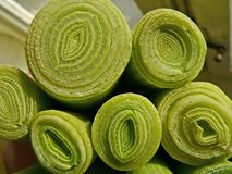 Leek cut section for cooking. Yellow daisy moonflower marguerite flower with green grass around. Summer Stock Image