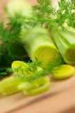 Leek and dill Stock Photography