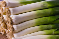 Leek Royalty Free Stock Photo