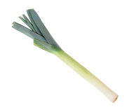 Leek Royalty Free Stock Photos
