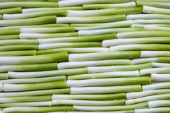 Leek in line stock images