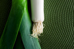 Leek over green Stock Images