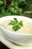 Leek and potato soup Royalty Free Stock Photography