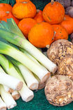 Leek, pumpkin and celery Royalty Free Stock Photo