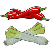 Leek and red pepper Stock Photography