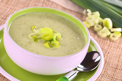 Leek Soup Stock Photography