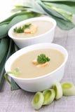 Leek soup. Bowl of gourmet leek soup royalty free stock images