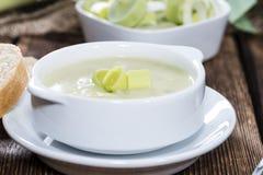 Leek Soup royalty free stock image