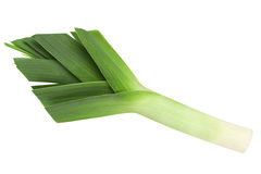 Leek vegetable on white. Leek vegetable closeup isolated on white background Royalty Free Stock Images