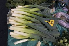 Leeks. Bunches of leeks for sale on a market outdoors royalty free stock photography