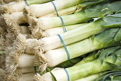 Leeks. Pile of leeks in a Market royalty free stock image