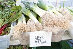 Leeks Royalty Free Stock Image
