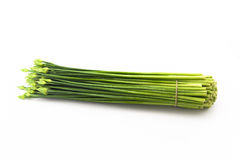 Leeks. The fresh leeks in the white background Stock Image