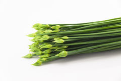 Leeks Stock Photos