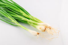 Leeks isolaated Royalty Free Stock Photography