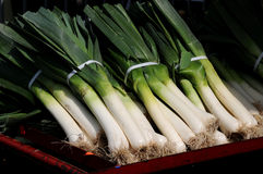 Leeks at the market. Harvest season brings a fresh crop of leeks to the farmers' market stock image