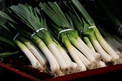 Leeks at the market. Harvest season brings a fresh crop of leeks to the farmers' market Stock Image