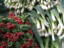Leeks and radishes on display Royalty Free Stock Photo