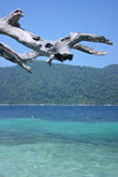 Leepae Island. Nice sea and nice beach stock photos
