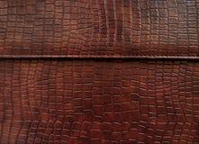 Leer met krokodil geklede textuur. Royalty-vrije Stock Afbeelding