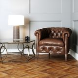 Leer uitstekend meubilair in klassiek binnenland stock illustratie