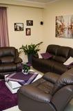 Leerbank en stoelen in een woonkamer Royalty-vrije Stock Foto
