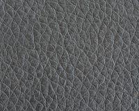 Leerdetail Royalty-vrije Stock Afbeelding