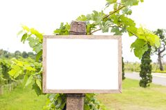 Leere Anschlagtafel mit freiem Raum für Text- oder Öffentlichkeitsanschlagbrett Stockbild